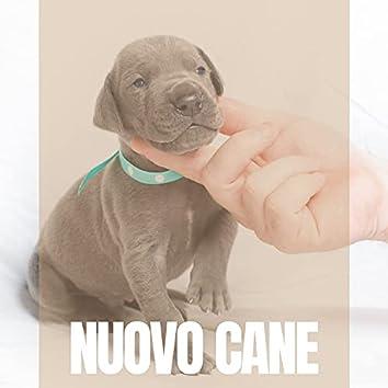Nuovo Cane