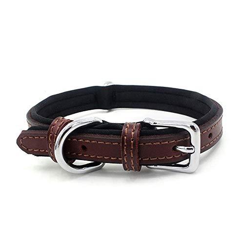 CttiuliCwxq Prima de Cuero auténtico Collar de Perro Collar Acolchado Perrito del Animal doméstico Ajustable for Medianas y Grandes Perros (Color : 2)