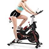 WISDOME Stainless Steel Indoor Exercise Bike with LCD Heart Rate Display, Belt Drive