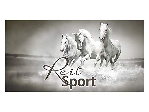 GrazDesign 991084 zichtwerende folie REIT sport/paarden | bedrukte raamfolie | glasdecoratiefolie als zichtwering voor de kinderkamer