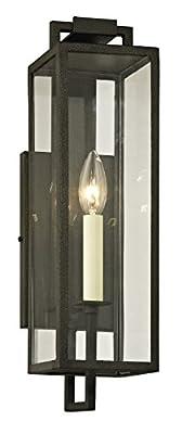 Beckham Light Outdoor Wall Sconce - Clear Glass