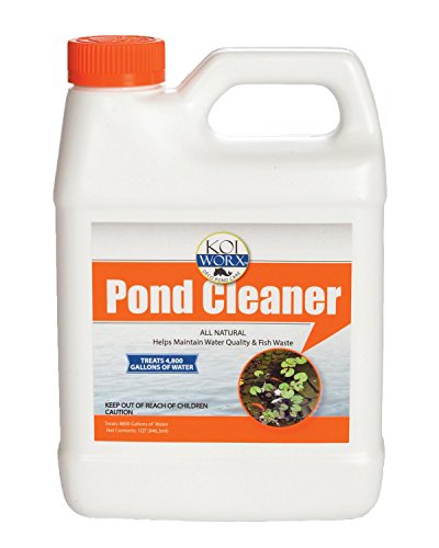 Sanco 888 Deco Natural Pond Cleaner, 1 quart
