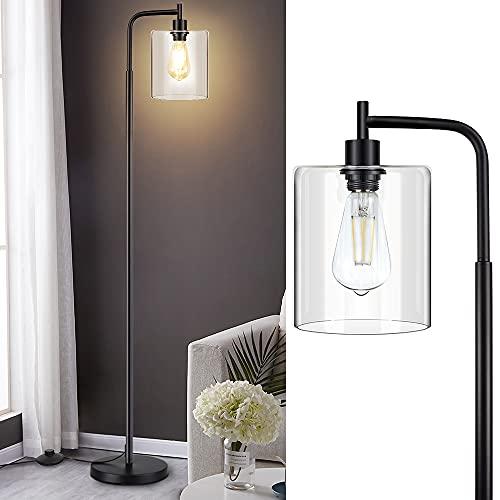 Depuley - Lámpara de pie de pie, lámpara de pie LED, lámpara...