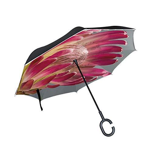 Protea Bloom Regenschirm mit roter Pflanze, doppelschichtig, umgekehrt, faltbar, mit C-förmigem Griff, UV-Schutz, Winddicht, für Auto im Freien