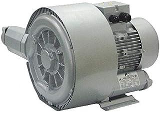 """1.20 Regenerative Blower 1 Phase, 104-127/208-254 Voltage, 1"""" (F) NPT Inlet Size"""