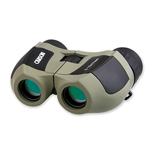 Carson MiniZoom 5-15x17mm Ultra Compact and Lightweight Zoom Binoculars for Travel, Bird Watching, Hiking, Camping, Surveillance, Sight-Seeing, Safaris, Hunting and Outdoor Adventures (MZ-517)