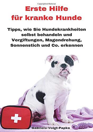 Erste Hilfe für kranke Hunde: Tipps, wie Sie Hundekrankheiten selbst behandeln und Vergiftungen, Magendrehung, Sonnenstich und Co. erkennen