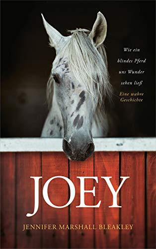 Joey - Wie ein blindes Pferd uns Wunder sehen ließ: Ein wahre Geschichte.