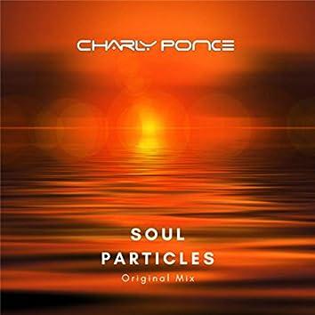 Soul Particles