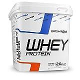Bodylab24 Whey Protein 2kg | Eiweißpulver, Protein-Shake für Kraftsport & Fitness | Kann den Muskelaufbau unterstützen | Hochwertiges Protein-Pulver mit 80% Eiweiß | Aspartamfrei | Schokolade
