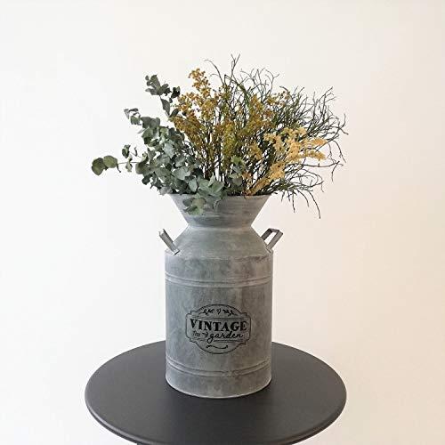 Koopman Dekorativ mjölkkanna vintage trädgård Ø21 x H 37 cm zink grå – plåtkanna vattenkanna dekorativ kanna bordsdekoration