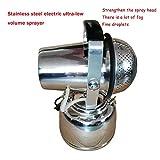 IAIZI 110V 5L eléctrico ULV de atomización pulverizador, atomizador de Acero Inoxidable, de riego riego pulverizador, Utilizado for la esterilización/desinfección, Aerosol Rango 8-10 Metros ZGHE