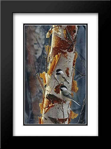 Bogle Collin 早割クーポン 15x18 Black Modern Museum Double Framed セールSALE%OFF and Matted