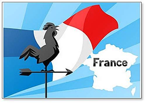 Haan Op Vlag Van Frankrijk - Koelkast Magneet