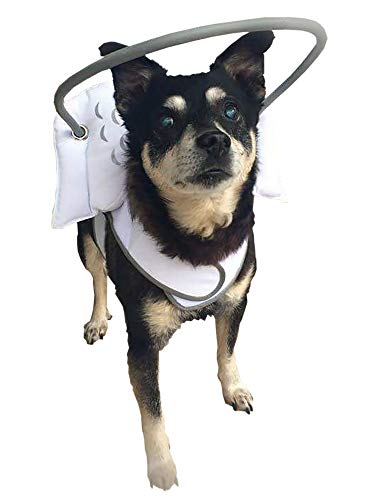 Muffin's Halo Guide for Blind Dogs (X-Small)