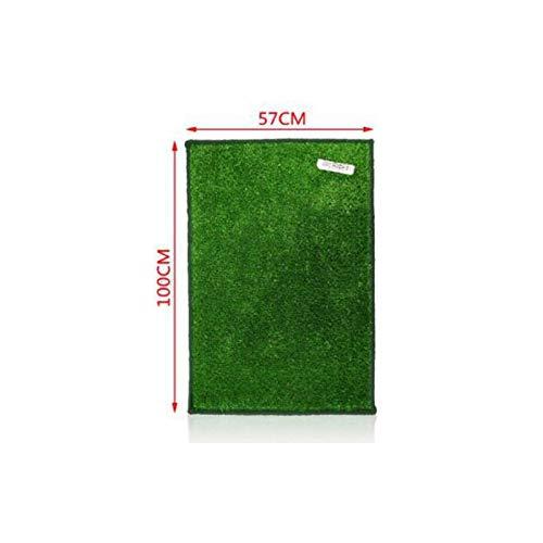 LEYENDAS Tappeto di Erba Artificiale Morbido per Cani, per Giardino/Balcone/Piscine (57 x 100 cm)