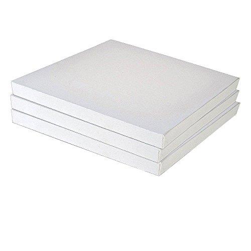 EAPEY Set da 3 Pezzi in Bianco per Pannelli in Tela Bianca per Pittura acrilica a Olio