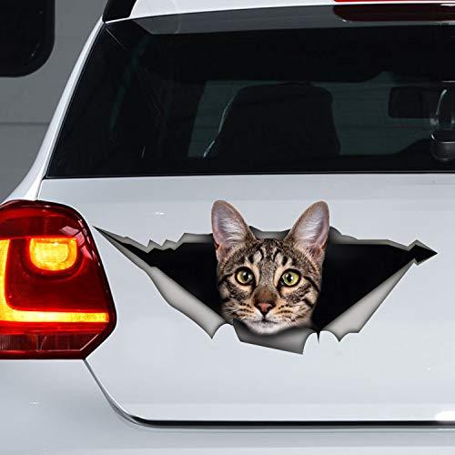 'N/A' Pegatina de gato de Savannah de 40 cm para coche con diseño de gato y gato