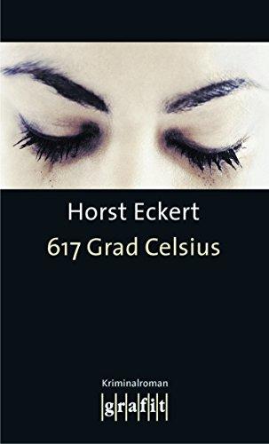 617 Grad Celsius: Kriminalroman (Grafitäter und Grafitote)