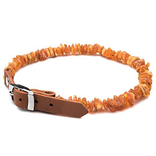 Collar de ámbar estándar para perro o gato con hebilla Leahter collar ámbar para perros y gatos collar de moda natural