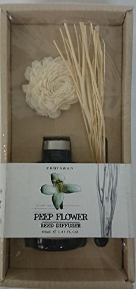 非公式ランドマーク壮大なリードデュフューザー アロマ 芳香 (PEEP Flower)