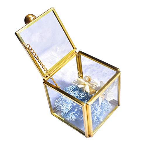 JOYKK Geometrische helder glas juwelendoos sieraden organiseren houder planten container - goud