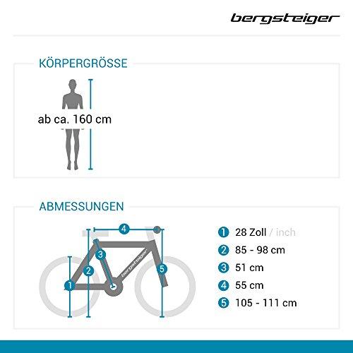Bergsteiger Florenz 28 Zoll Damenfahrrad, ab 160 cm, Korb, Fahrrad-Licht, Shimano 7 Gang-Schaltung, Standlichtfunktion, Damen-Citybike, Damenrad im Retro-Design - 2