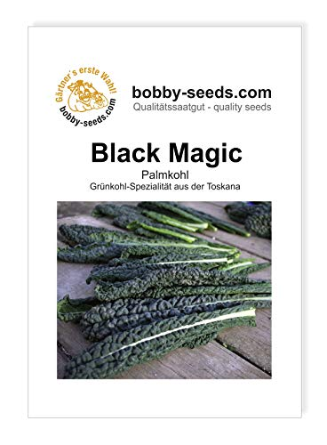 Bobby-Seeds Kohl-Samen Toskanischer Palmkohl Black Magic Portion