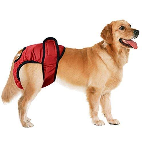 2 PCS weibliche Hund Physiologische Unterwäche Hygieneeinlagen Hundeschutzhose Sanitär Windel Haustier hündinnen schutzhose- Gr. XXL, Schwarz + Rot