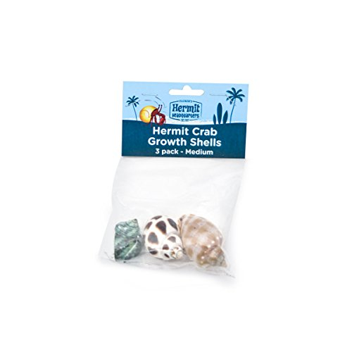 Flukers Hermit Crab Growth Shells, Medium, 3-Pack