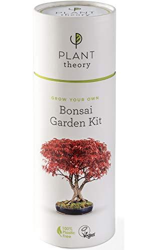 Plant Theory Kit de bonsái, set de regalo para cultivar tu propia planta de casa con compost vegano, 5 macetas biodegradables y 100% libre de plástico