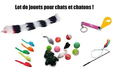 Lots de 19 Jouets pour Chat