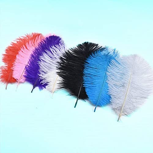Hudulin unisex 10Pcs Natural Ostrich Feathers Home Ranking TOP17 for Crafts Party Wed