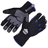 Winter Work Glove, Thermal Insulated, Touchscreen, Reinforced Palms, Ergodyne ProFlex 817