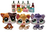 TTtoy lps Husky and Shorthair Cat, 3pcs Figures Tan and Purple Husky 399 lps Heart Eyes Shorthair Cat with lps Accessories Drinks Cake Kids Gift (Husky and Shorthair Cat)