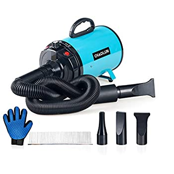 CHAOLUN Dog Pet Hair Dryer High Velocity - Blower Grooming Dryer with Heater Dogs & Cats 3.2HP 2400W Powerful Blow Force Stepless Adjustable Speed Reduce Noise Heat Insulation Cerulean