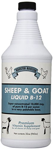 Rooster Booster B-12 Sheep and Goat Liquid, 32-Ounce