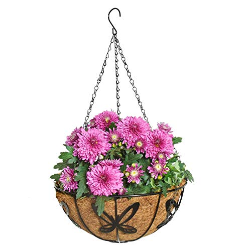 XIANLIAN Hanging Baskets for Plants, Metal Hanging Planter Basket with Coco Liner, Plants Friendly Hanging Baskets Outdoor for Garden Decor, Great for Indoor or Outdoor Plants