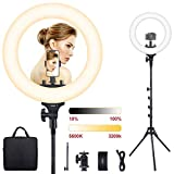Ring Light, ESDDI 15inch Outer Dimmable Camera Photo Video LED Lighting Kit, Adjustable Color Temperature 3200K-5600K, Light Stand, Phone Adapter, Soft Tube for Portrait YouTube Video, Vlog, Makeup