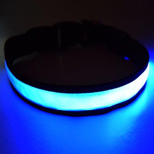 """Fun Pets Hundesicherheitshalsband mit ultraheller, wiederaufladbarer LED mit hervorragender Sichtbarkeit und erhöhter Sicherheit Medium (40cm - 50cm / 15.7"""" - 19.7"""") Blau"""