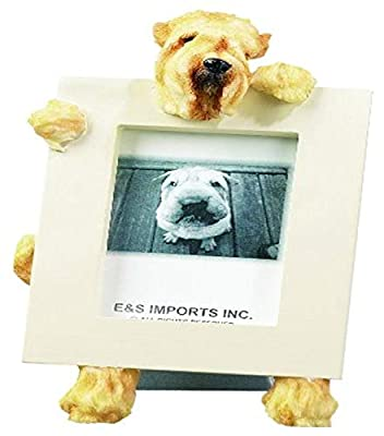 Wheaten Terrier Picture Frame Holds Your Favorite 2.5 by 3.5 Inch Photo, Hand Painted Realistic Looking Wheaten Terrier Stands 6 Inches Tall Holding Beautifully Crafted Frame, Unique and Special Wheaten Terrier Gifts for Wheaten Terrier Owners by E&S Impo