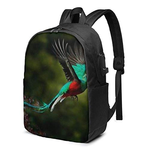 Penguin Fashion Travel Backpacks for Men and Women, School Laptop Bookbags with USB Charging Port Fit 17 Inch