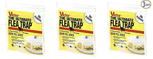 Safer Brand SYNCHKG107272 Victor M231 Ultimate Flea Trap Packs of 3 Refills Repel-pe, Yellow