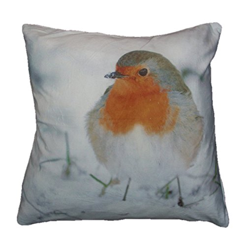 TOOGOO Robin Red Bird in the Snow Cushion Cover Super Soft Feel
