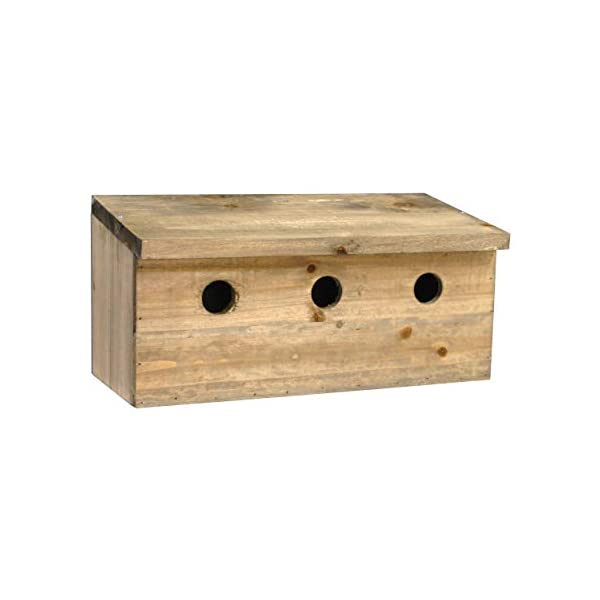 Selections Sparrow Colony Wooden Nesting Box Terrace
