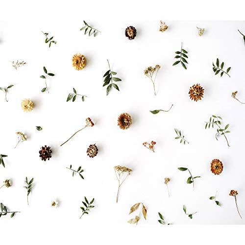 decomonkey Fototapete Blumen 350x256 cm XXL Design Tapete Fototapeten Vlies Tapeten Vliestapete Wandtapete moderne Wand Schlafzimmer Wohnzimmer Natur Pflanzen