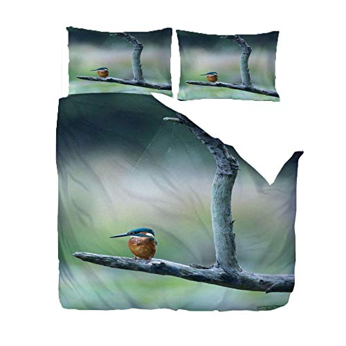 QDDRL Single Bedding Duvet Cover Sets 140x200 Cm Animal Blue Hummingbird With Zipper Closure Ultra Soft Microfiber Duvet Cover for Adult, Kids And Teens, With 2 Pillowcases