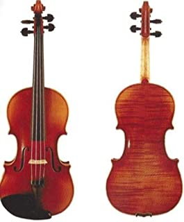 D Z Strad Violin 120 with Case, Bow, Shoulder Rest, and Rosin- 4/4