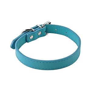 Leather Dog Collar Medium