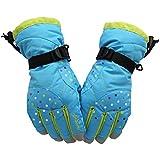 Womens Fluff Handschuhe, Winter Warm Linied Dicke Winddichte Handschuhe Outdoor Radfahren Klettern Sport -